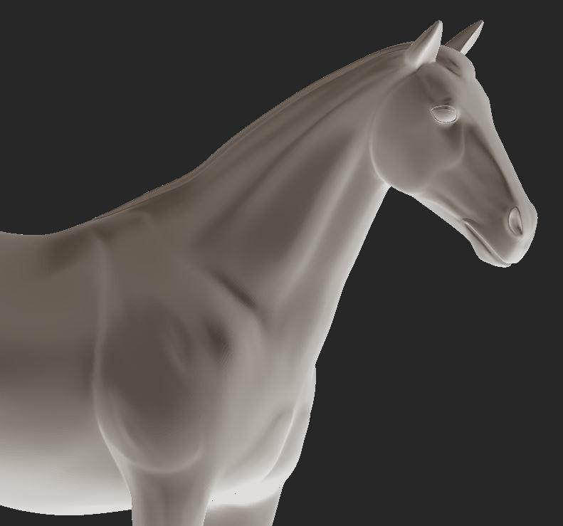 Une simplicité pour vous, une liberté pour votre cheval